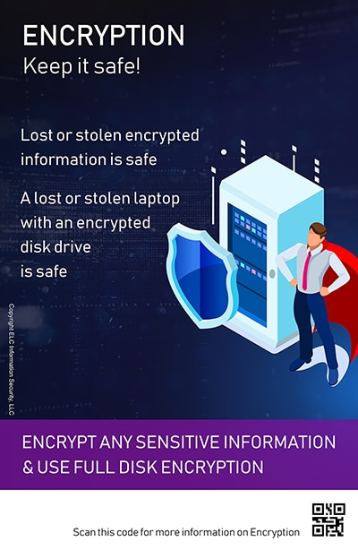 Security Awareness Poster Microtraining | 210 Encryption security poster